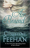 Air Bound Large Print Hardcover