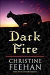 Dark Fire large print