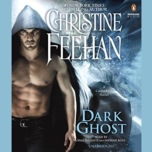 Dark Ghost Audiobook