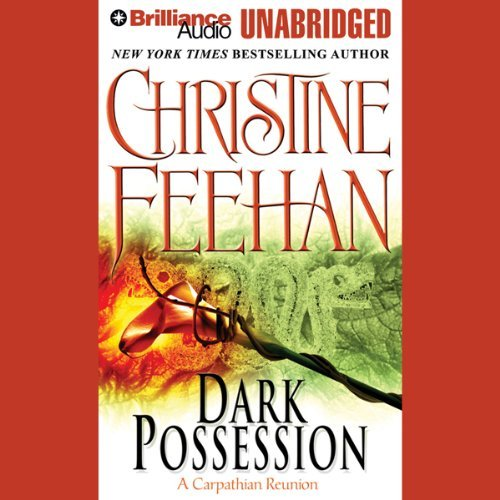 Dark Possession Audiobook