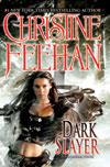 Dark Slayer e-book
