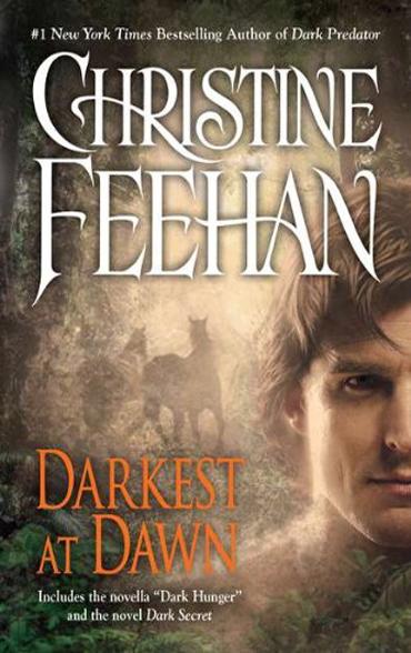 Darkest at Dawn Kindle