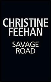 Save Road E-Book