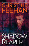 Shadow Reaper e-book