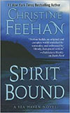 Spirit Bound large print hardcover