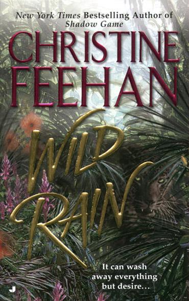 Wild Rain E-Book
