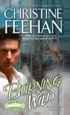 Burning Wild in ebook format!