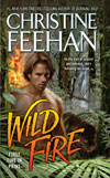 Wild Fire in ebook format!